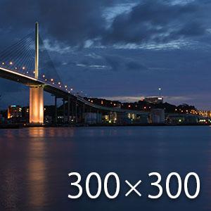 素晴らしい福岡の海と橋の夜景
